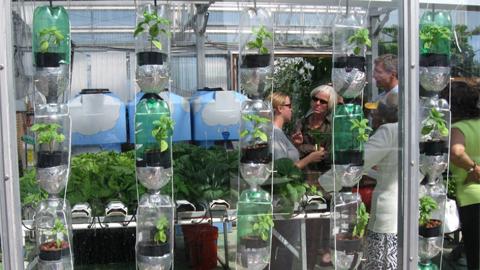Ph nom ne viral des jardins dans vos fen tres le for Jardin hydroponique