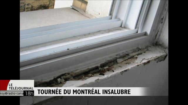 Tournée du Montréal insalubre
