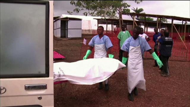 Chronique Ebola
