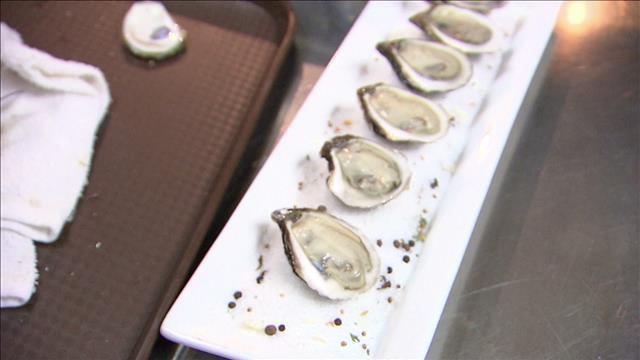 La génétique des huîtres