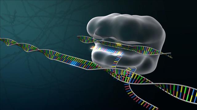 Chirurgiedel'ADN