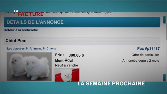 La semaine prochaine à LA FACTURE: émission du 29 septembre 2015