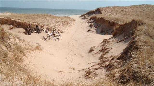 La protection des dunes aux Iles de la Madeleine