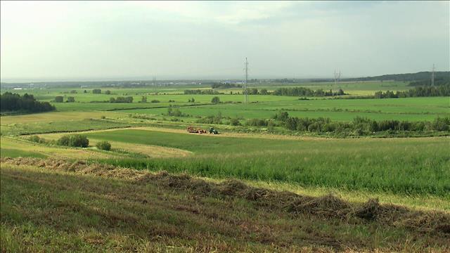 Impacts des changements climatiques sur l'agriculture