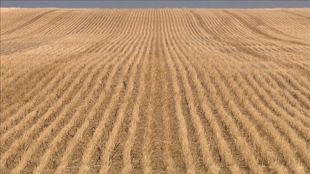 L'agriculture sans chimie