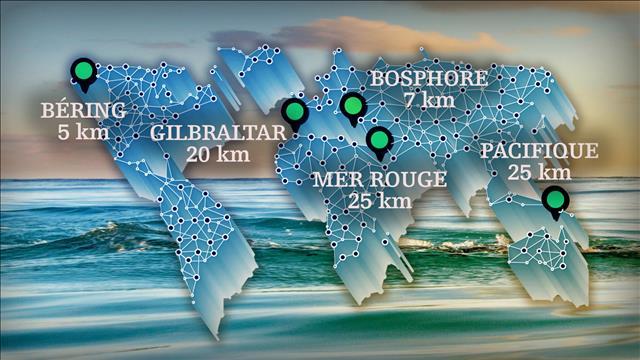 Cinq continents à la nage en 80 jours