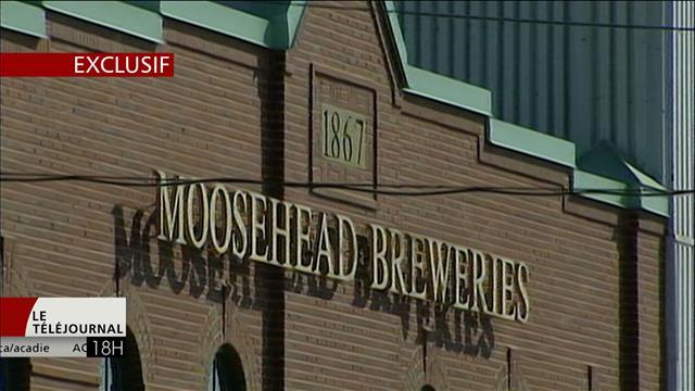 Moosehead a bénéficié d'un traitement de faveur d'Alcool NB