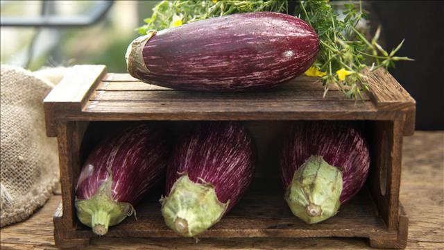 Produit vedette: l'aubergine