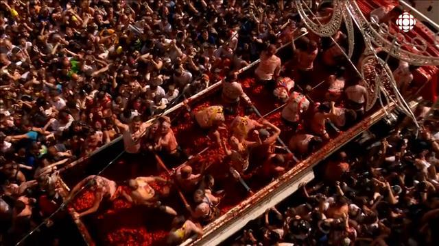 Des tomates par milliers pour célébrer la Tomatina