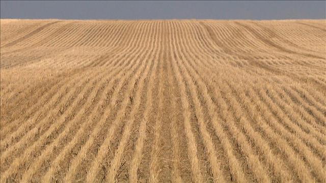 Une agriculture sans chimie