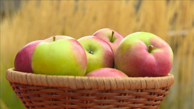 produit vedette Les Pommes