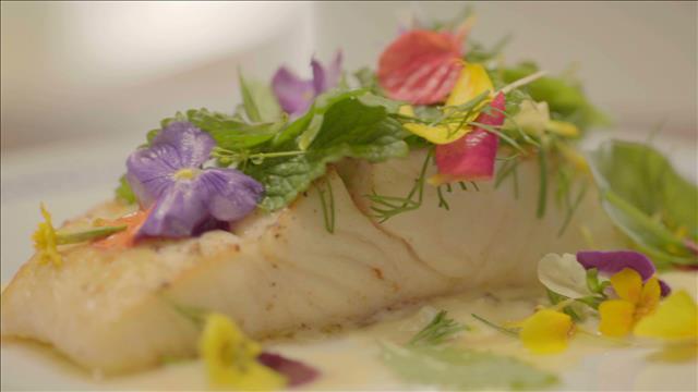 Flétan de l'Atlantique, sauce gribiche et salade d'herbes