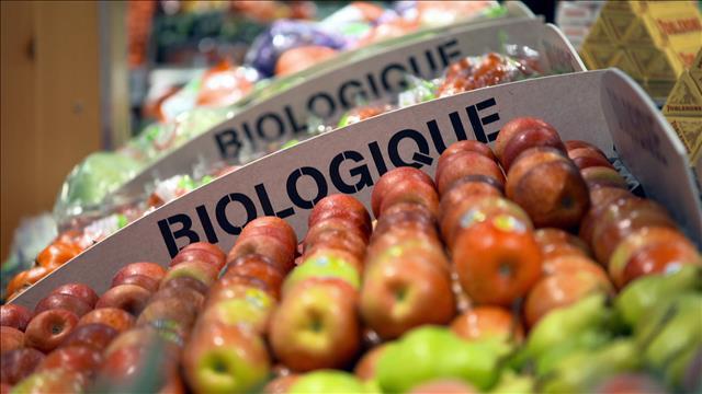 L'affichage des produits biologiques