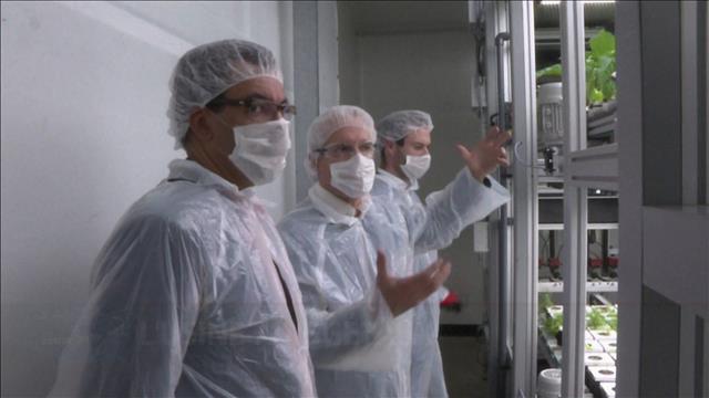 L'usine pour les végétaux en France