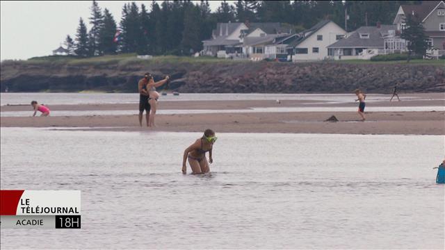 Le Nouveau-Brunswick n'a pas respecté ses règles sur la qualité de l'eau à la plage Parlee
