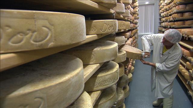 Les fromages à pâte ferme
