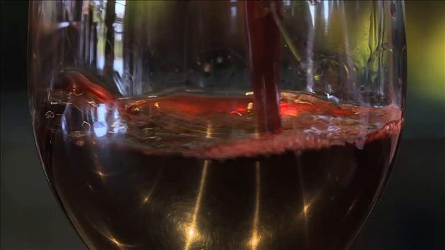 Tranche de vie - Passion pour le vin
