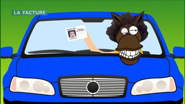 Le fin mot de l'histoire sur les conducteurs occasionnels et les assurances auto