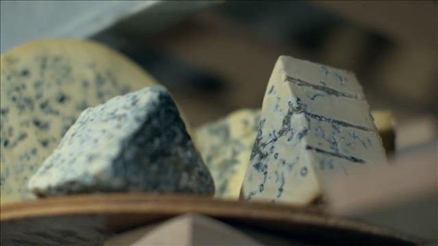 Les fromages à pâte persillée, des fromages qui ont du goût