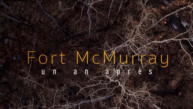 Fort McMurray : un an après
