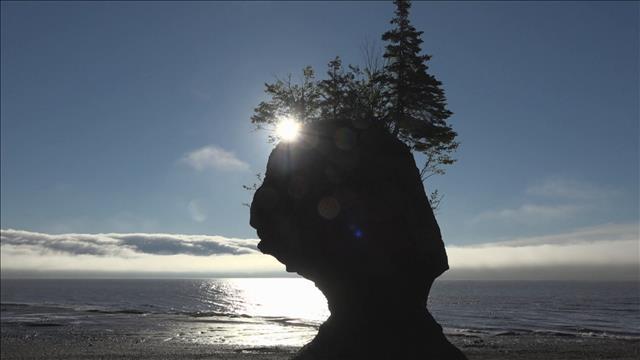 Les rochers de Hopewell, dans la baie de Fundy