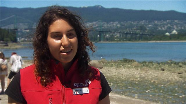 Jessica Steele, biologiste marine: « L'Ouest a une influence qui va vraiment sortir tout autour du Canada »