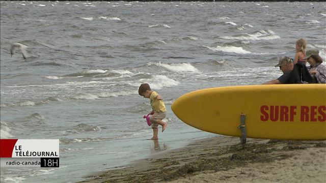 Interdictions de baignade à la plage Parlee : l'inquiétude grandit chez les commerçants