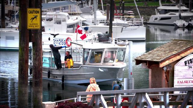 Ricardo va à la pêche aux crevettes tachetées de Vancouver