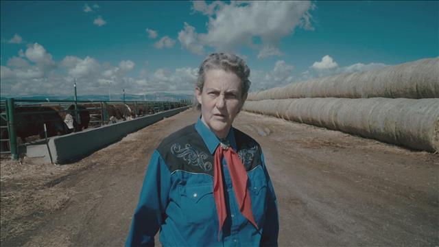 Temple Grandin : voir le monde comme les animaux