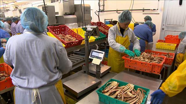 Nos produits de la mer: une richesse qu'on exporte