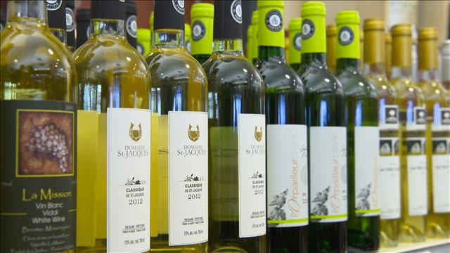 Les vins du Québec sur les tablettes