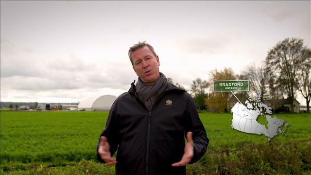 Ricardo visite une ferme de carottes en terre en Ontario