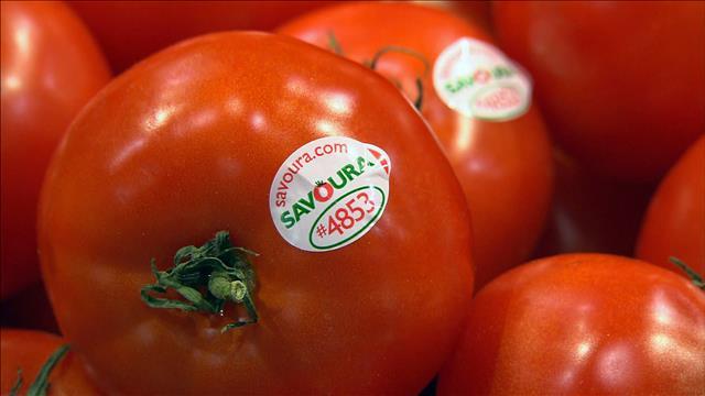 Le prix des tomates