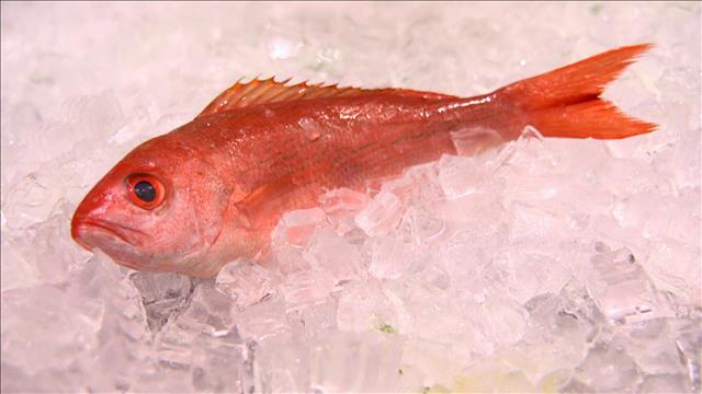 L'art culinaire des poissons entiers