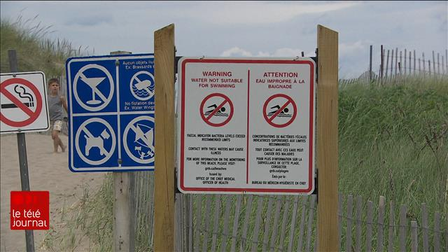 Interdiction de baignade à la plage Parlee