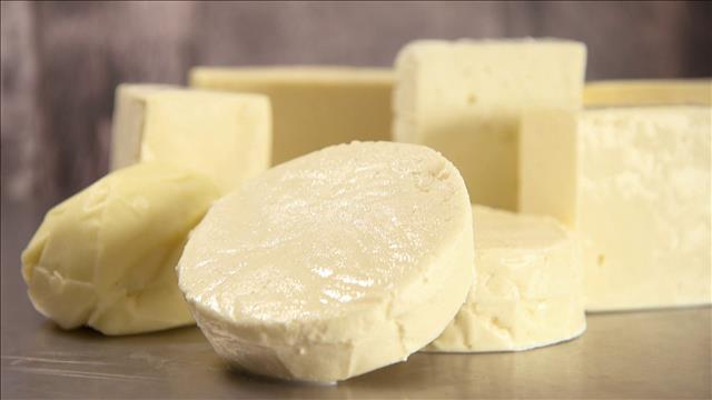 Des fromages latinos