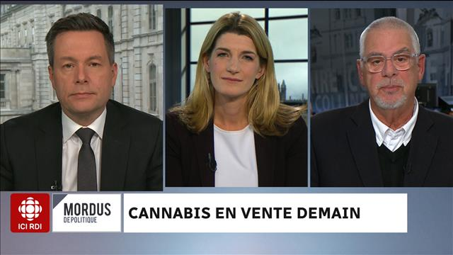 Cannabis en vente demain