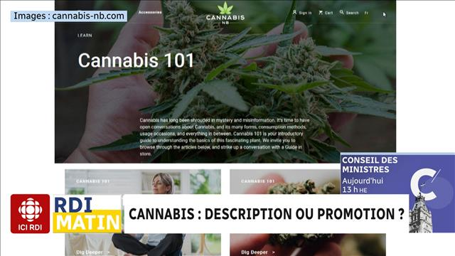 Cannabis : description ou promotion ?