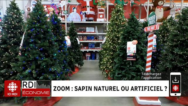 ZOOM : sapin naturel ou artificiel ?