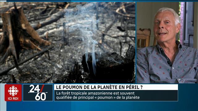 Le poumon de la planète en péril?