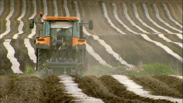 Les plastiques en agriculture