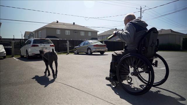 Retraite Québec impose une pénalité discriminatoire à des personnes handicapées