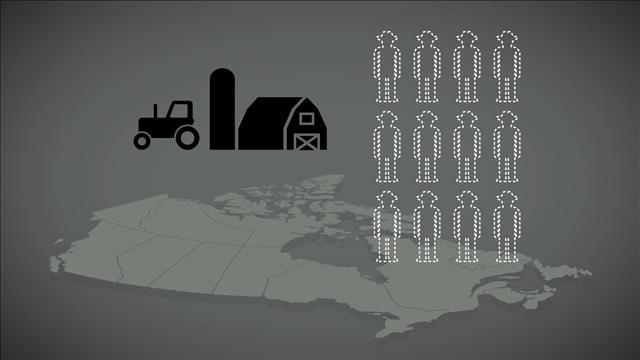 Capsule chiffrée #94 : Travailleurs étrangers temporaires