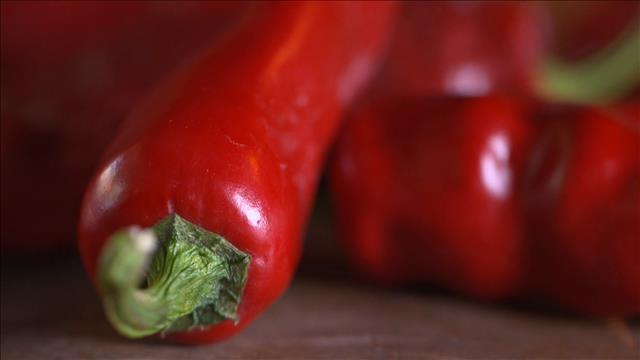 À la découverte du piment gorria