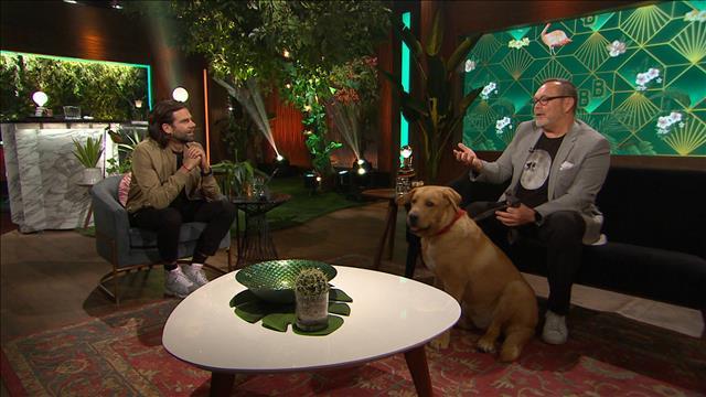 Jean-Michel Anctil et son chien Wilcox