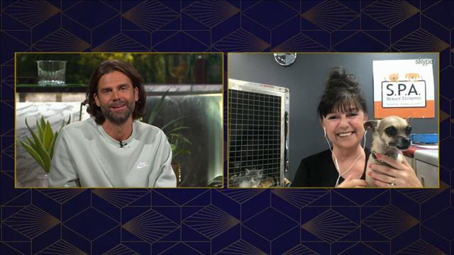 Discussion avec Brigit Hamel, la directrice de la SPA Beauce-Etchemin