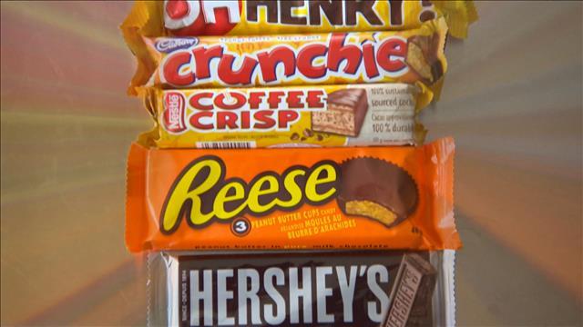Les barres de chocolat sous la loupe