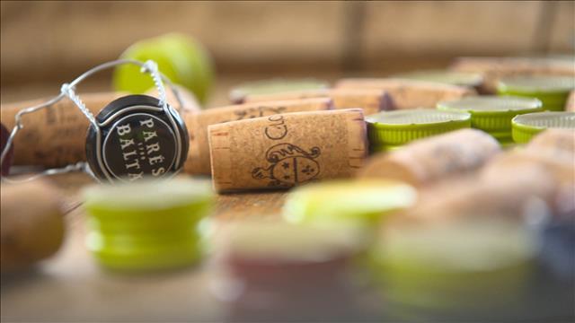 Comment bien conserver une bouteille de vin ouverte ?