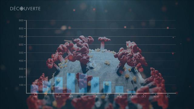 Modélisateurs : Projetés dans la pandémie