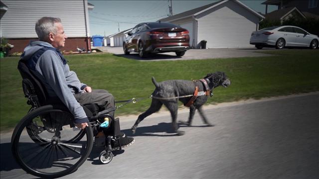 Handicapé, pénalisé mais prêt à se battre
